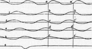 Frequenza Respiratoria: quanto dovremmo respirare?